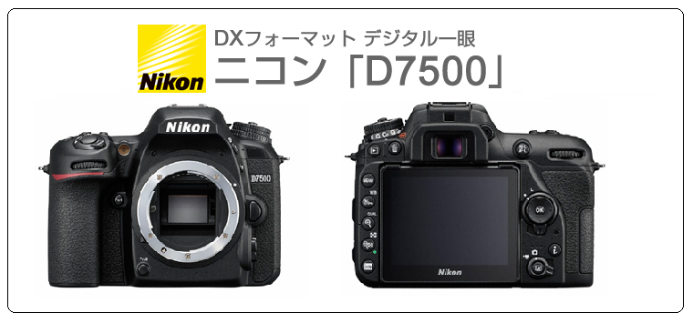 camera-nikon-1704k