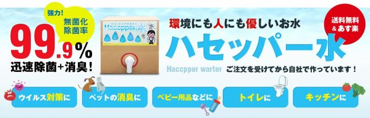 header_image01_kai